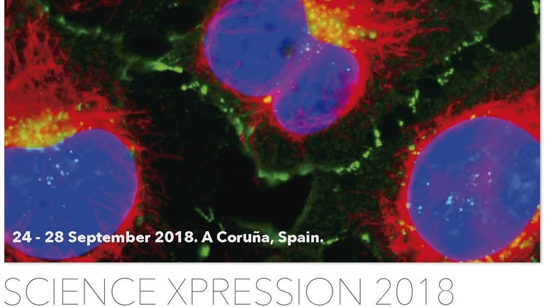 Show 53.159 1384x778 science xpression 2018 v2